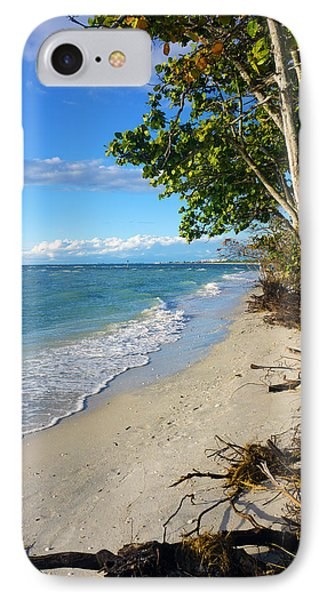 Delnor Wiggins Pass State Park IPhone Case