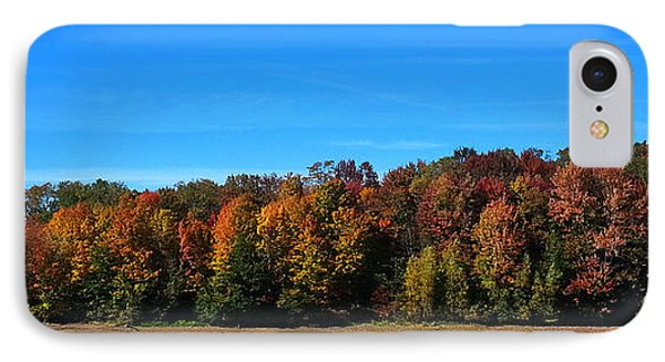 IPhone Case featuring the photograph Delta Lake State Park Foliage by Diane E Berry