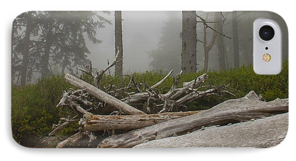 Ruby Beach In A Fog IPhone Case