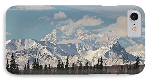 Denali In Broad Pass Phone Case by Donna Quante