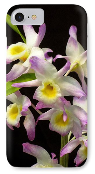 IPhone Case featuring the photograph Dendrobium Orchid by Alfred Ng