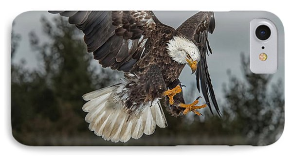 Descending Eagle IPhone Case by CR  Courson