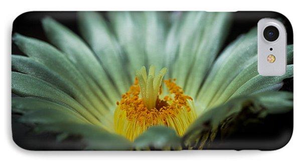 Desert Flower IPhone Case by Elena E Giorgi