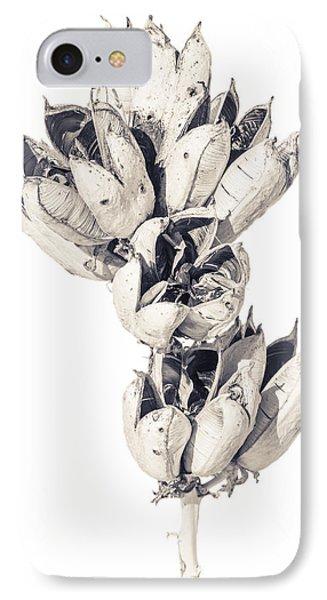 Desert Flower IPhone Case by Racheal Christian