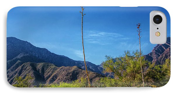 IPhone Case featuring the photograph Desert Flowers In The Anza-borrego Desert State Park by Randall Nyhof