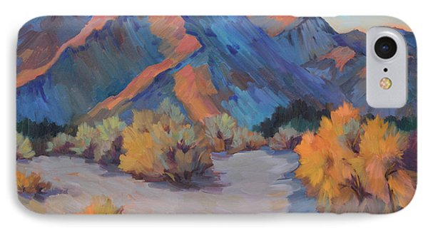 IPhone Case featuring the painting Desert Light by Diane McClary