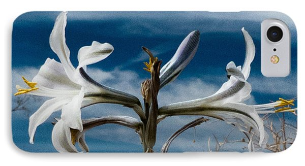 IPhone Case featuring the photograph Desert Lilly Close Up by Jeremy McKay