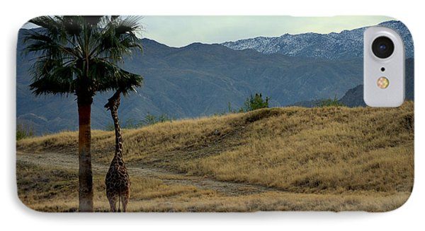 Desert Palm Giraffe 001 IPhone Case
