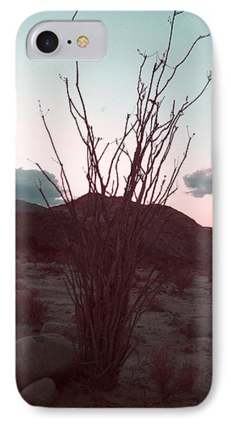 Desert Plant And Sunset IPhone Case by Naxart Studio