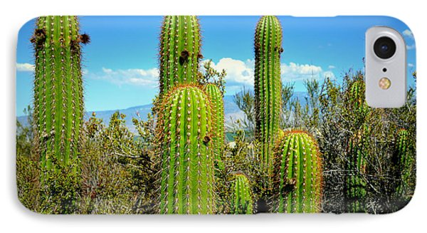IPhone Case featuring the photograph Desert Plants - All In The Family by Glenn McCarthy