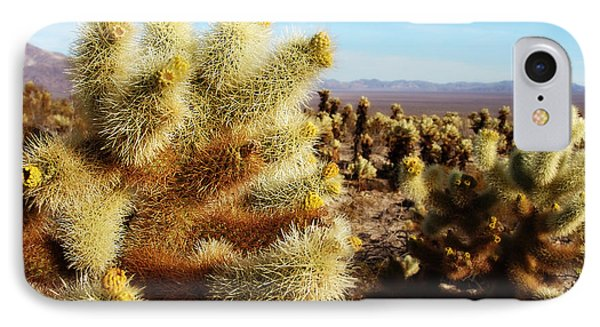 IPhone Case featuring the photograph Desert Plants - Porcupine Cholla by Glenn McCarthy