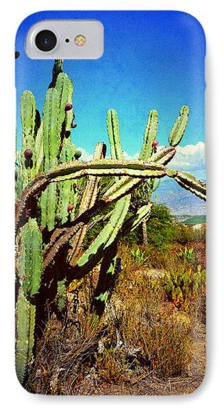 IPhone Case featuring the photograph Desert Plants - Westward Ho by Glenn McCarthy