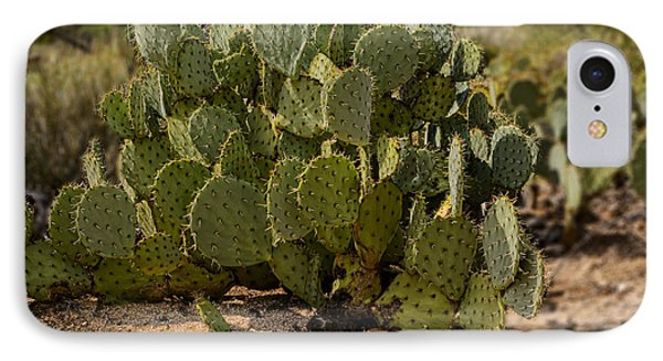 Desert Prickly-pear No6 IPhone Case by Mark Myhaver