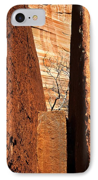 Desert Vise IPhone Case