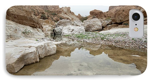 Desert Water IPhone Case