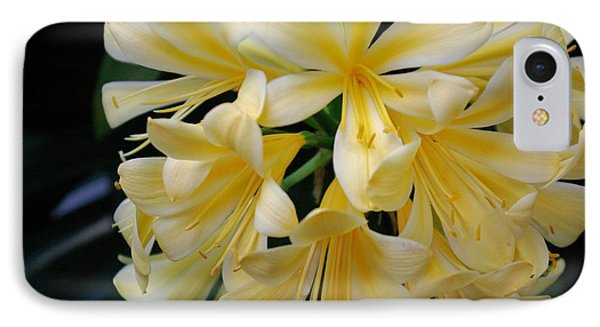 Details In Yellow And White IPhone Case by John S