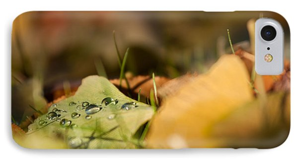 Dew And Gingko  Phone Case by Bulik Elena