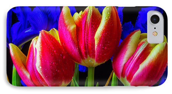 Dew Covered Tulips And Iris IPhone Case