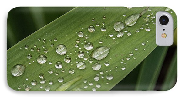 IPhone Case featuring the photograph Dew Drops On Leaf by Jean Noren