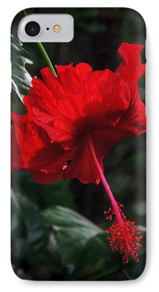 IPhone Case featuring the photograph Dewy Hibiscus Macro 001 by Lance Vaughn
