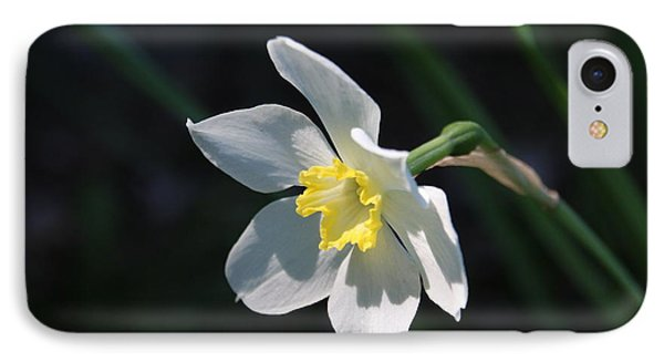 Diana's Daffodil IPhone Case by Marilyn Carlyle Greiner