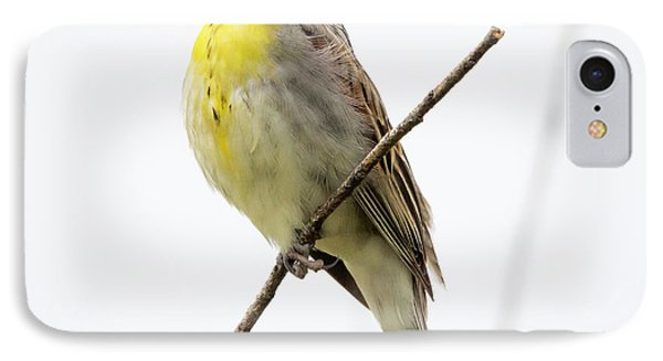 IPhone Case featuring the photograph Dickcissel  by Ricky L Jones