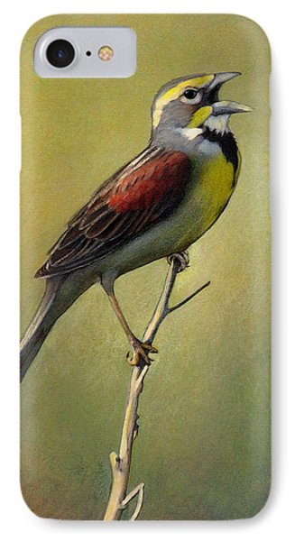 Dickcissel Summer Song IPhone Case by Bruce Morrison
