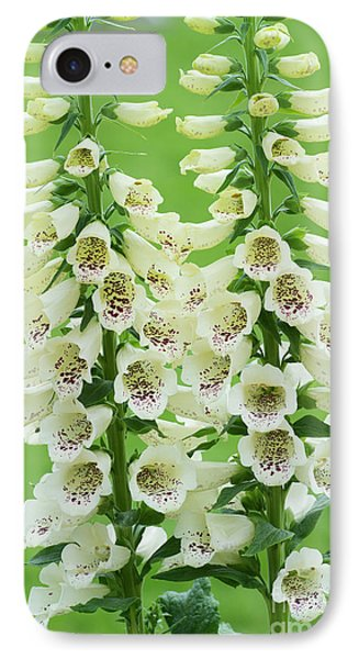 Digitalis Purpurea Primrose Carousel IPhone Case by Tim Gainey