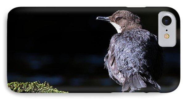 Dipper IPhone Case by Ian Hufton