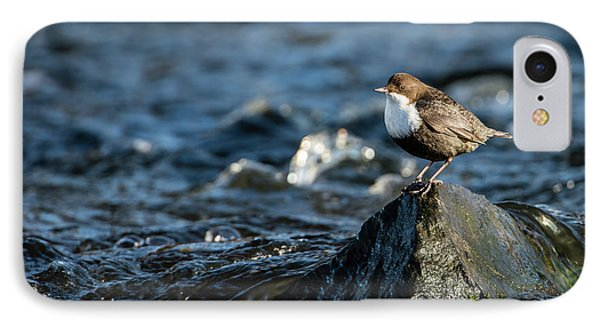 IPhone Case featuring the photograph Dipper On The Rock by Torbjorn Swenelius