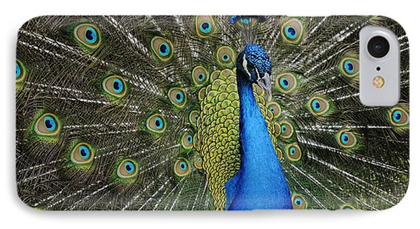 IPhone Case featuring the photograph Displaying Peacock Portrait by Bradford Martin