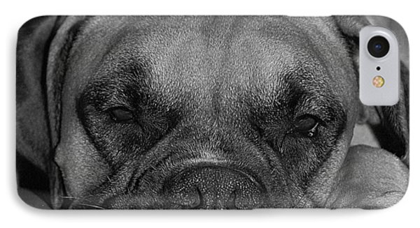 Disturbing His Nap Phone Case by DigiArt Diaries by Vicky B Fuller