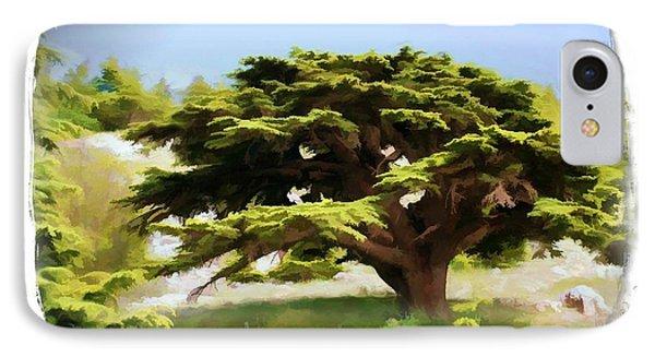 Do-00319 Cedar Tree IPhone Case by Digital Oil