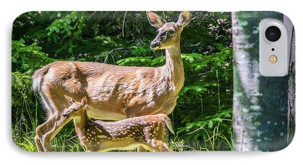 Doe And Fawn IPhone Case by Ken Morris