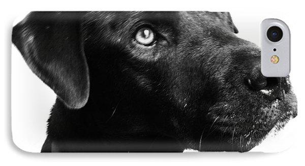 Dog Phone Case by Amanda Barcon