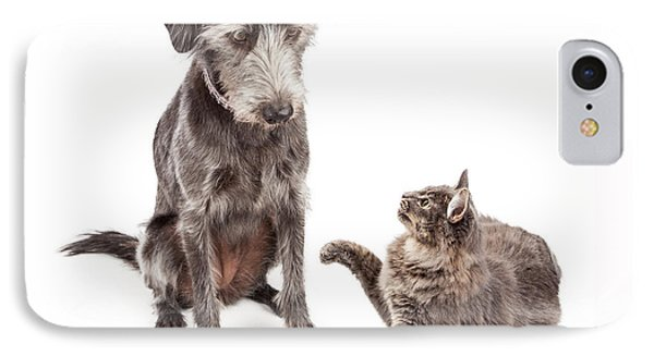 Dog And Cat Laying Together Looking Forward IPhone Case