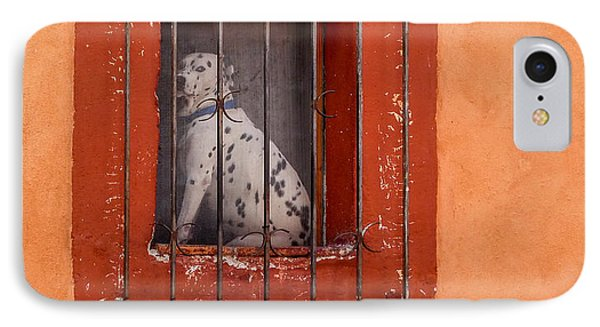 Dog In Window IPhone Case by Douglas J Fisher