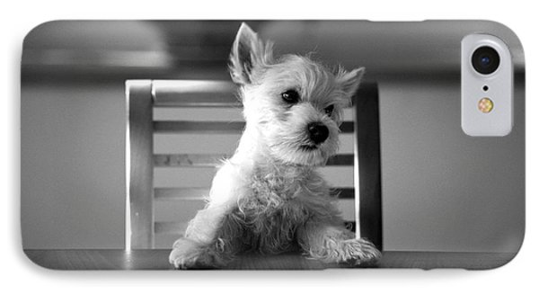 Dog Sitting On The Table IPhone Case by Sumit Mehndiratta