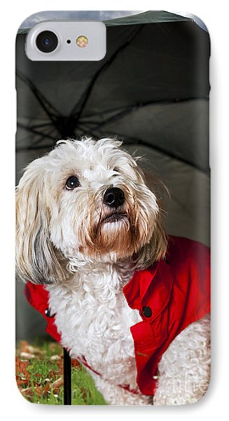 Dog Under Umbrella IPhone Case by Elena Elisseeva