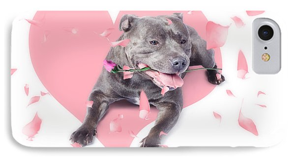 Dog With Pink Rose On Heart Shape Background IPhone Case by Jorgo Photography - Wall Art Gallery