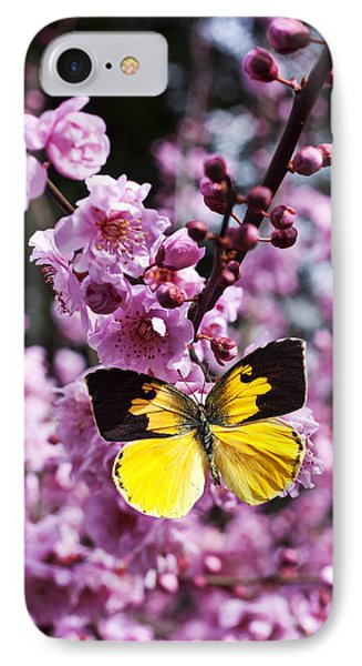 Dogface Butterfly In Plum Tree Phone Case by Garry Gay