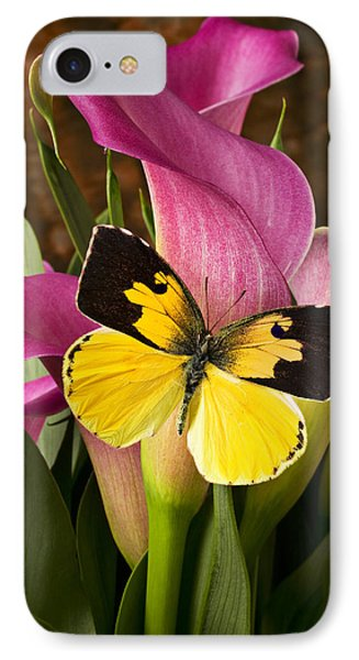 Dogface Butterfly On Pink Calla Lily  IPhone Case by Garry Gay