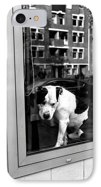 Doggy In The Window Mono IPhone Case