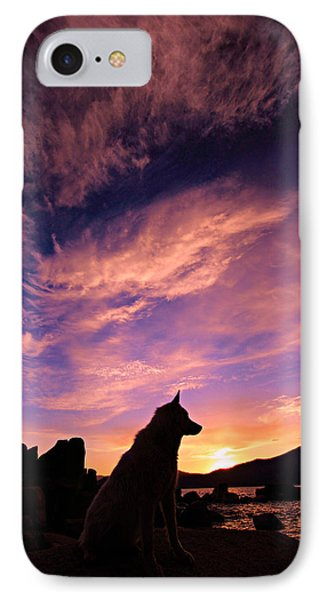 Dogs Dream Too IPhone Case by Sean Sarsfield