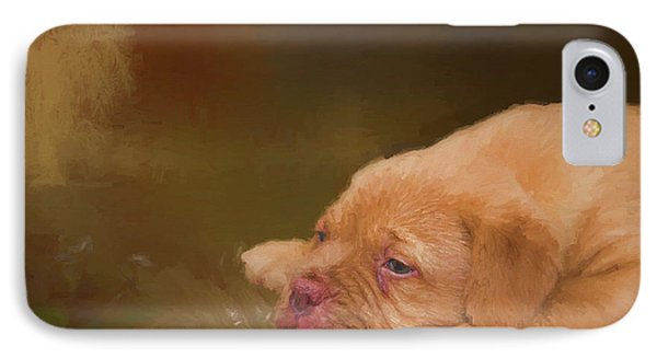 Dogue De Bordeaux Painted Puppy IPhone Case by Ericamaxine Price