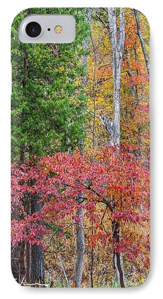Dogwood And Cedar IPhone Case by Tim Fitzharris