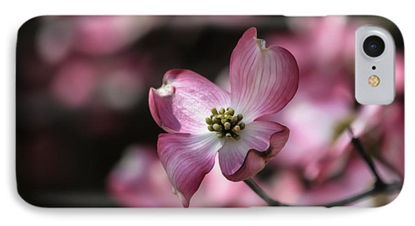 IPhone Case featuring the photograph Dogwood  by Brenda Bostic