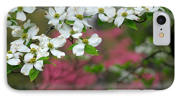 Dogwood Days IPhone Case by Living Color Photography Lorraine Lynch