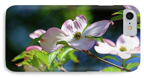 Dogwood Flowers IPhone Case by Ronda Ryan