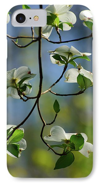 Dogwood In Lake Murray IPhone Case